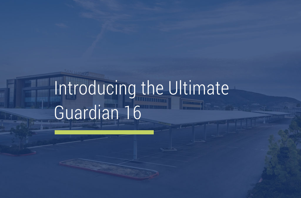 The Ultimate Guardian 16: DSA Approved Structure